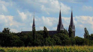 5-daags_Brabant_Zomerarrangement_header